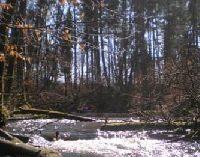Rzeka Bytowa